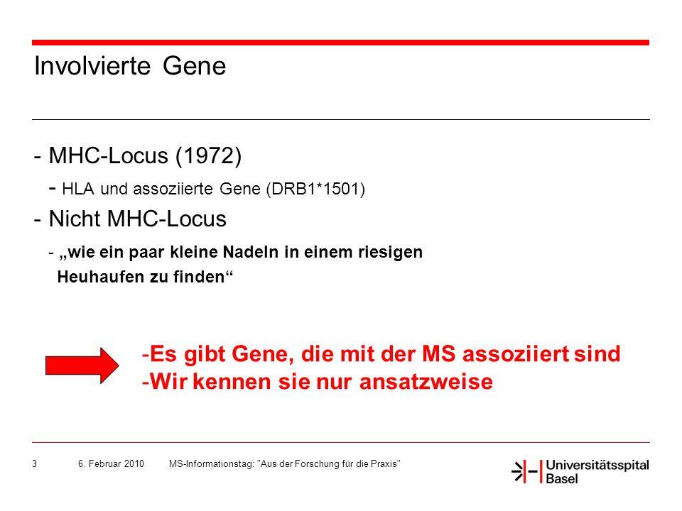 6. Februar 2010MS-Informationstag: Aus der Forschung für die Praxis 4 Grundlagen Ddd Ggg Hhhhh M L