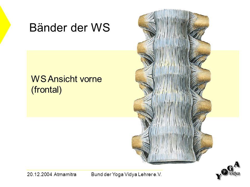 20.12.2004 Atmamitra Bund der Yoga Vidya Lehrer e.V. Bänder der WS WS Ansicht vorne (frontal)