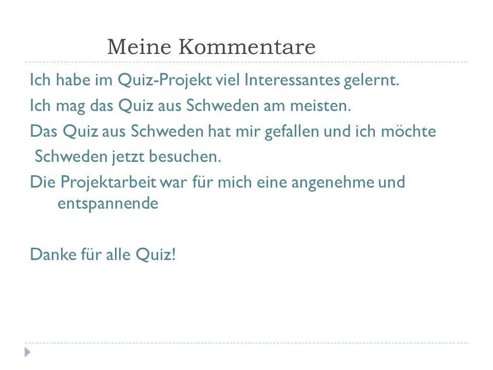 Meine Kommentare Ich habe im Quiz-Projekt viel Interessantes gelernt.