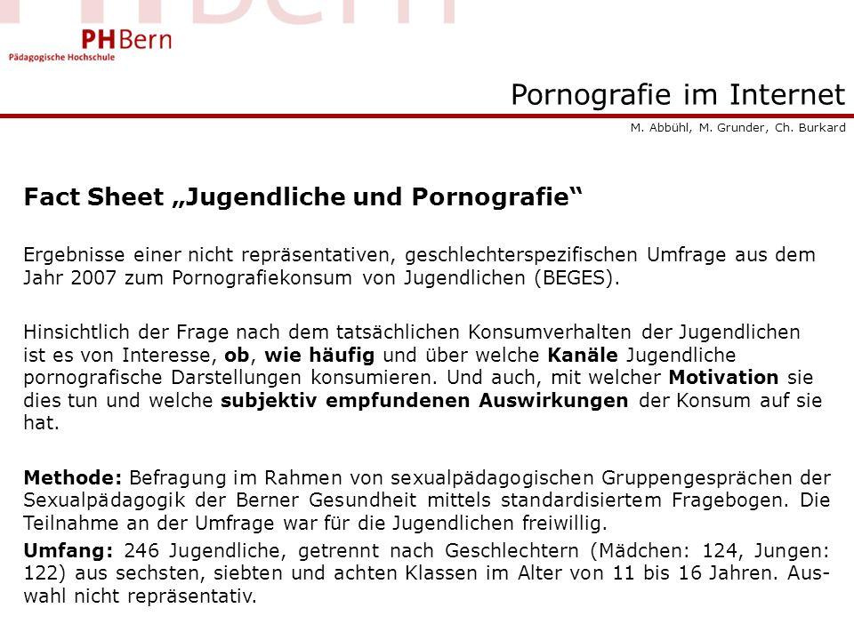 Pornografie im Internet Fact Sheet Jugendliche und Pornografie Ergebnisse einer nicht repräsentativen, geschlechterspezifischen Umfrage aus dem Jahr 2007 zum Pornografiekonsum von Jugendlichen (BEGES).