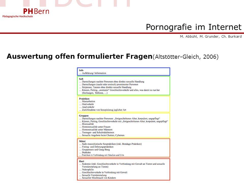 Pornografie im Internet Auswertung offen formulierter Fragen (Altstötter-Gleich, 2006) M. Abbühl, M. Grunder, Ch. Burkard