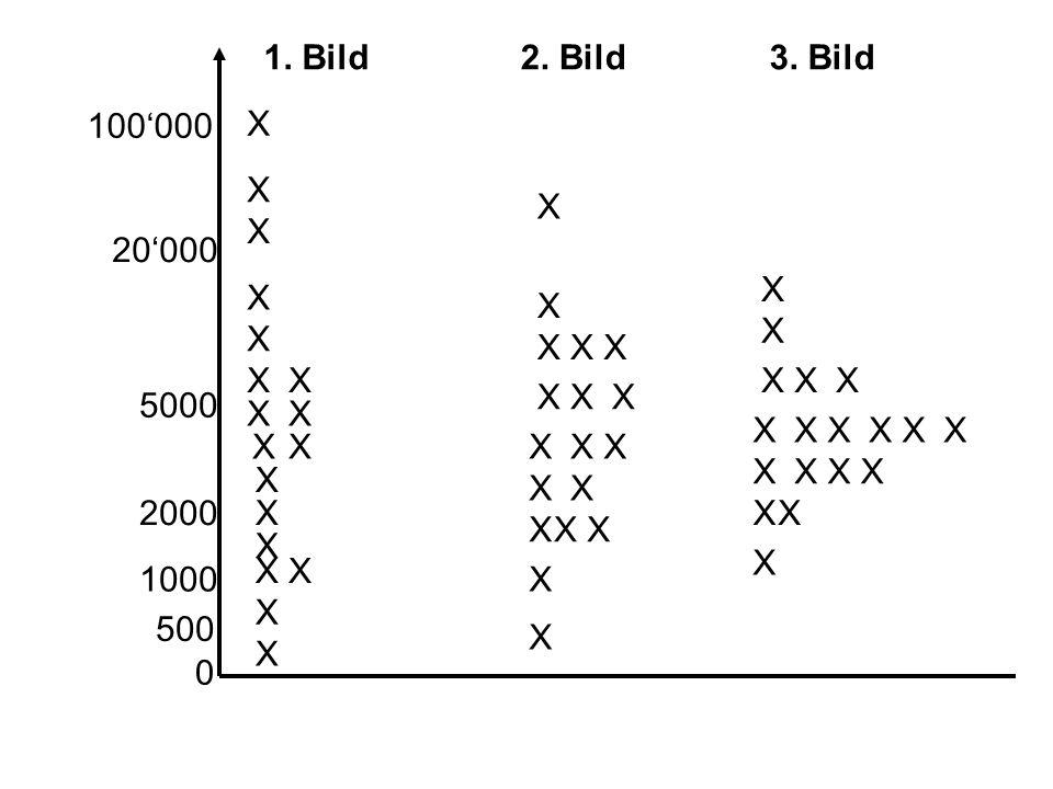 X X 1. Bild2. Bild3.
