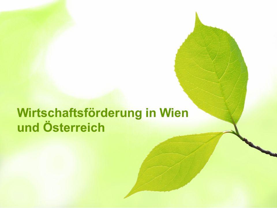 Wirtschaftsförderung in Wien und Österreich