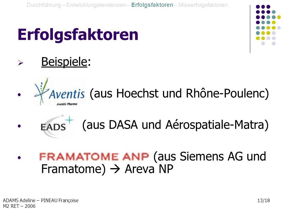 ADAMS Adeline – PINEAU Françoise M2 RET – 2006 13/18 Erfolgsfaktoren Durchführung – Entwicklungstendenzen – Erfolgsfaktoren – Misserfolgsfaktoren Beis