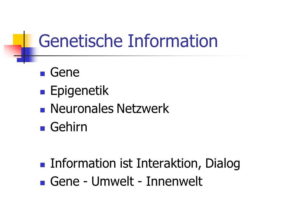 Genetische Information Gene Epigenetik Neuronales Netzwerk Gehirn Information ist Interaktion, Dialog Gene - Umwelt - Innenwelt