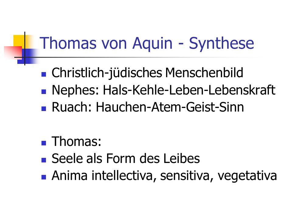 Thomas von Aquin - Synthese Christlich-jüdisches Menschenbild Nephes: Hals-Kehle-Leben-Lebenskraft Ruach: Hauchen-Atem-Geist-Sinn Thomas: Seele als Fo
