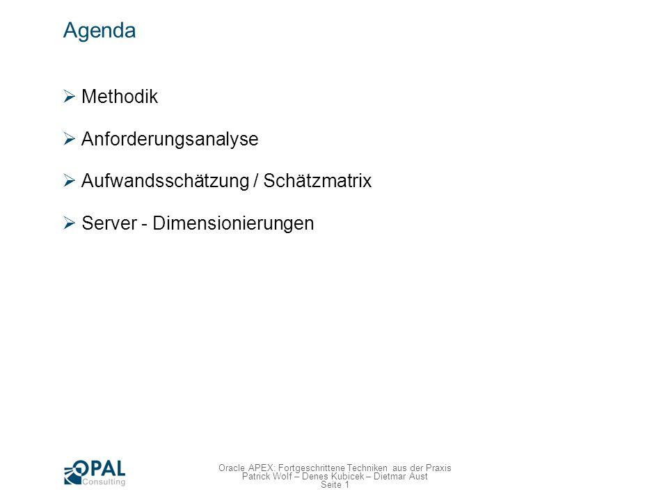 Seite 2 Oracle APEX: Fortgeschrittene Techniken aus der Praxis Patrick Wolf – Denes Kubicek – Dietmar Aust Methodik Für welche Projekte eignet sich Apex.