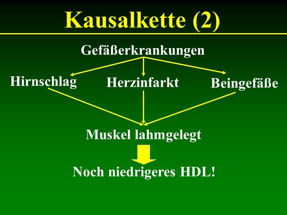 Kausalkette (2) Gefäßerkrankungen Hirnschlag Herzinfarkt Beingefäße Muskel lahmgelegt Noch niedrigeres HDL!