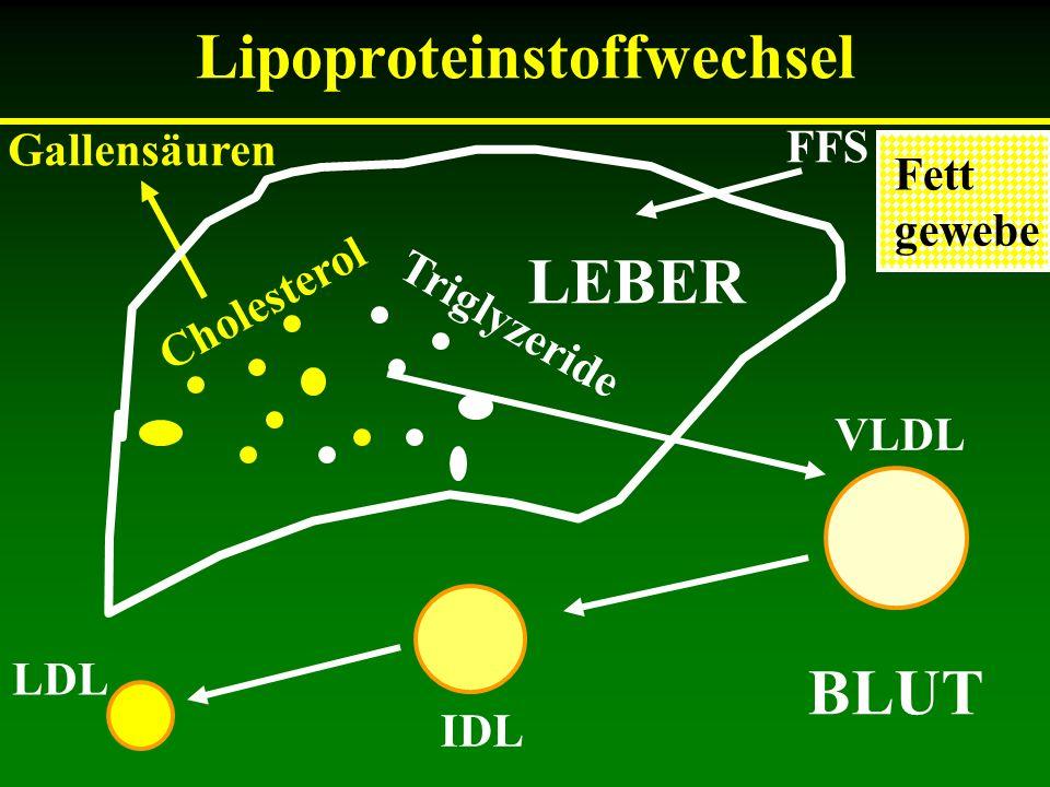 Lipoproteinstoffwechsel Cholesterol Triglyzeride Gallensäuren VLDL IDL LDL FFS BLUT Fett gewebe LEBER