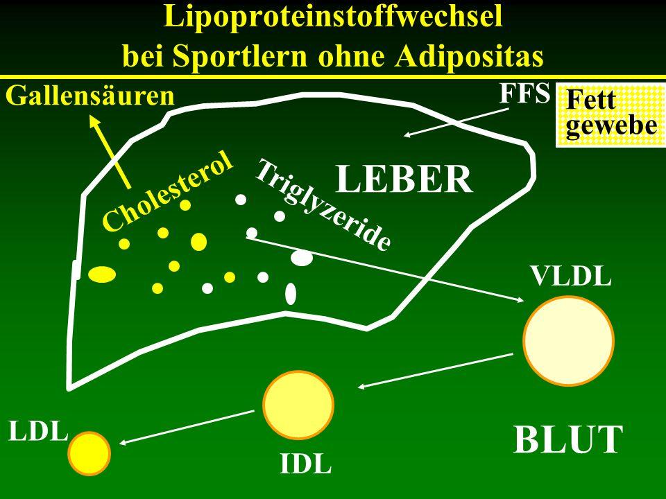 Lipoproteinstoffwechsel bei Sportlern ohne Adipositas Cholesterol Triglyzeride Gallensäuren VLDL IDL LDL FFS BLUT Fett gewebe LEBER
