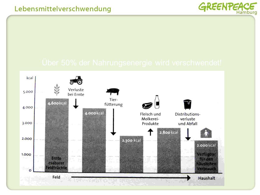 Über 50% der Nahrungsenergie wird verschwendet!