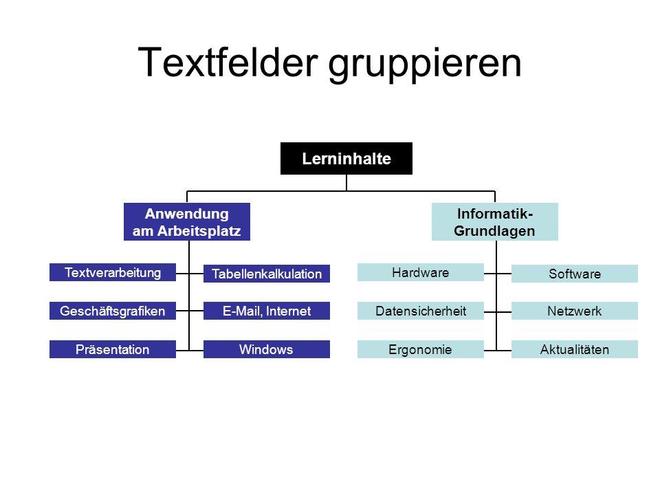 Textfelder gruppieren Anwendung am Arbeitsplatz Informatik- Grundlagen Textverarbeitung Tabellenkalkulation GeschäftsgrafikenE-Mail, Internet WindowsP