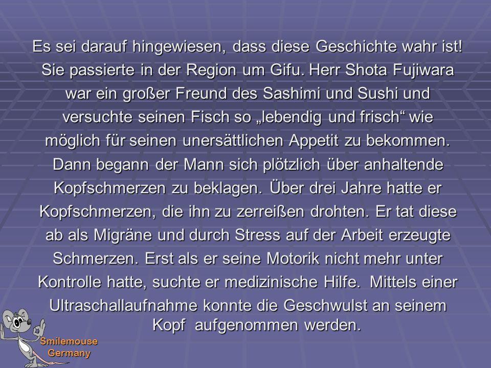 Smilemouse Germany Es sei darauf hingewiesen, dass diese Geschichte wahr ist! Sie passierte in der Region um Gifu. Herr Shota Fujiwara war ein großer