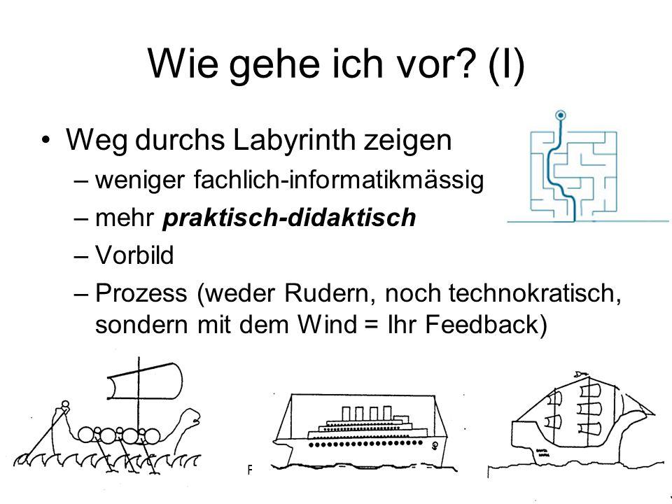 Paul MiottiFD IN I - HS 08/09 - Woche 015 Wie gehe ich vor? (I) Weg durchs Labyrinth zeigen –weniger fachlich-informatikmässig –mehr praktisch-didakti
