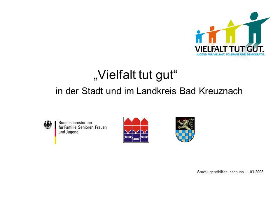 Vielfalt tut gut in der Stadt und im Landkreis Bad Kreuznach Stadtjugendhilfeausschuss 11.03.2008