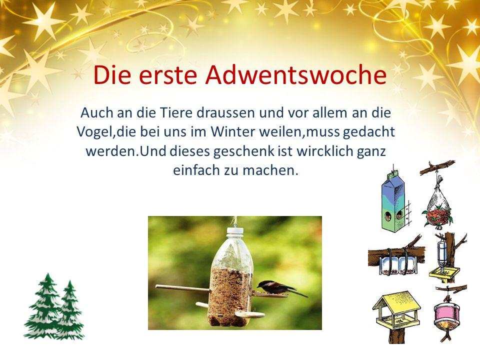 Die erste Adwentswoche Auch an die Tiere draussen und vor allem an die Vogel,die bei uns im Winter weilen,muss gedacht werden.Und dieses geschenk ist