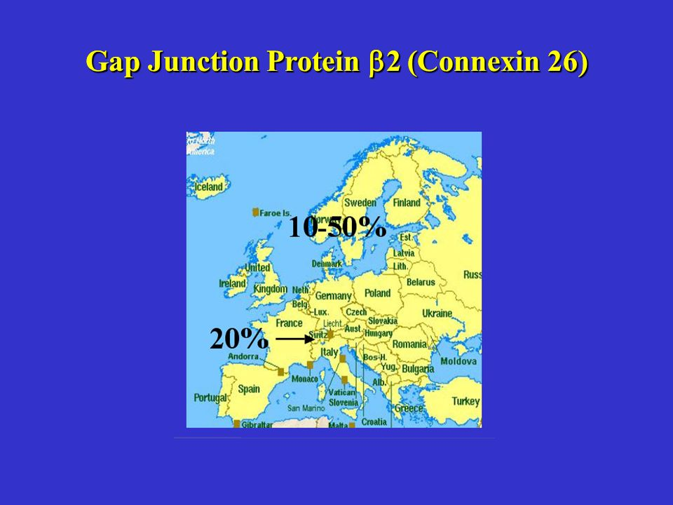 Gap Junction Protein 2 (Connexin 26)