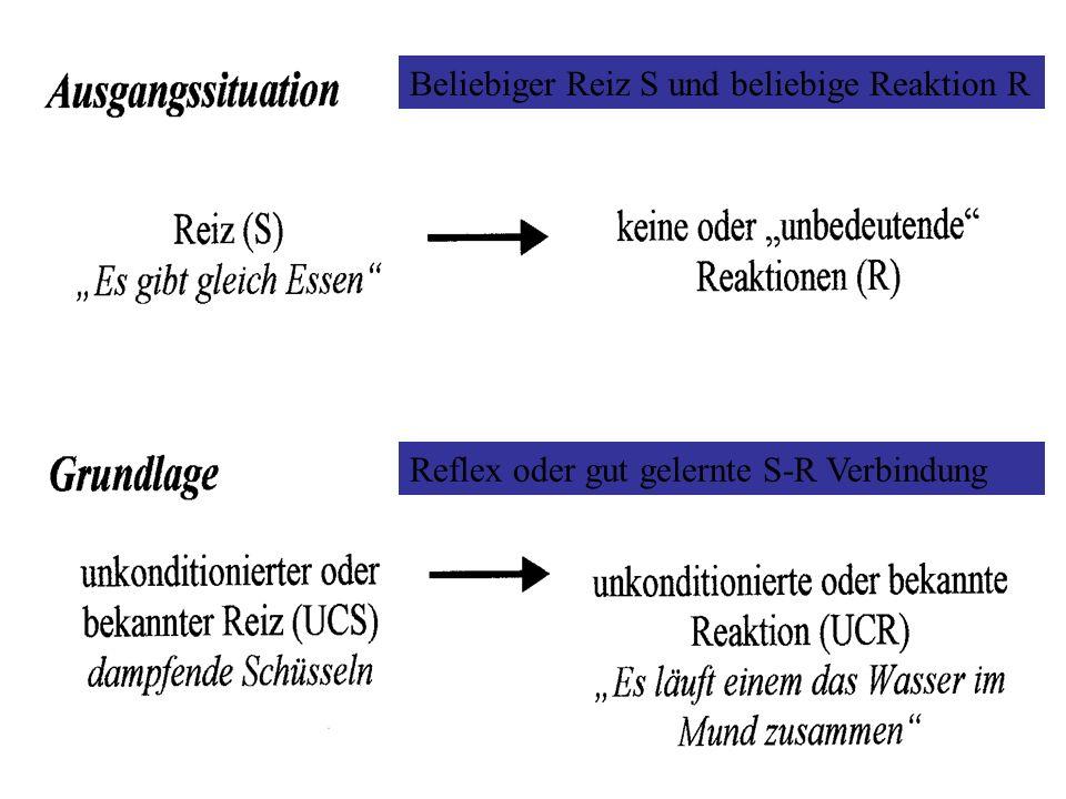 Reflexe Nahrung, milde Säure => Speichelsekretion Luftstoß => Lidschluss Schreckreiz => Pulsfrequenz Helligkeitsveränderung => Pupillenkontraktion Sch