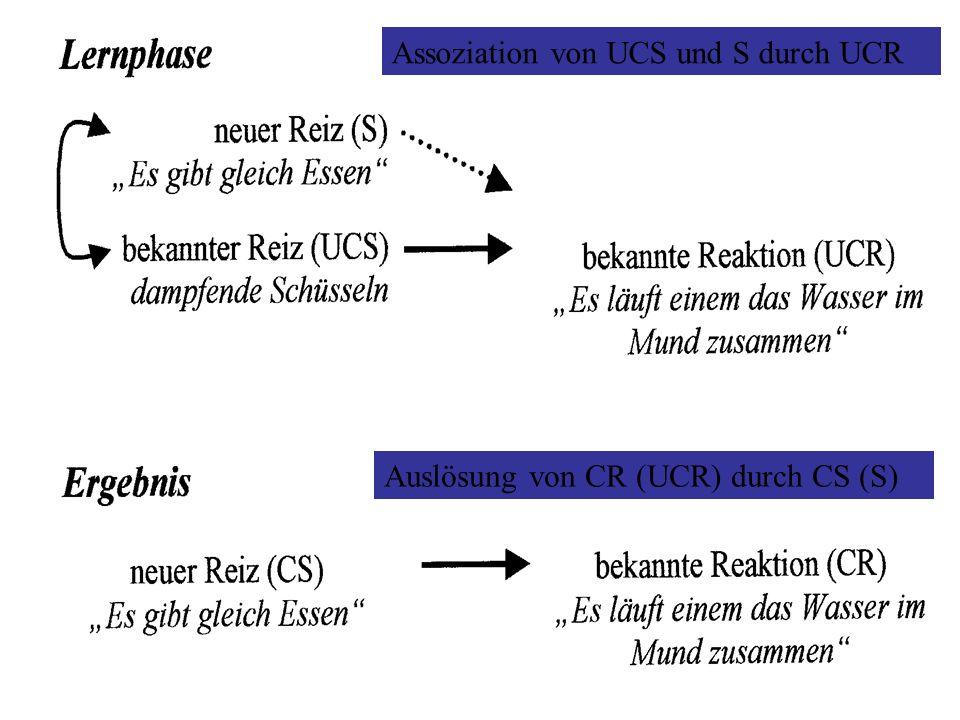 Reflex oder gut gelernte S-R Verbindung Beliebiger Reiz S und beliebige Reaktion R