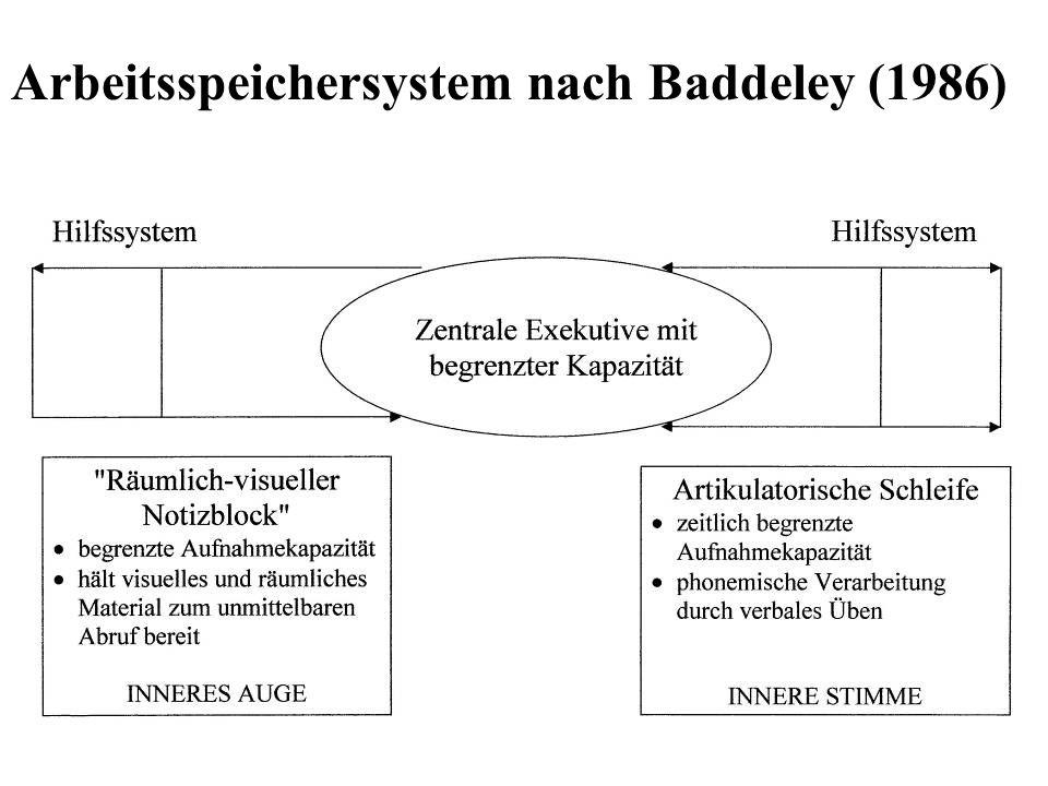 Artikulatorische Schleife Unterstützungssystem für zentrale Verarbeitungs-einheit Rückkopplungsschleife des verbalen Übens Zuständig für die zeitliche