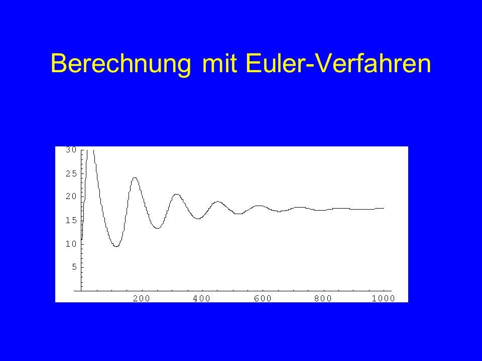 Berechnung mit Euler-Verfahren Füchse
