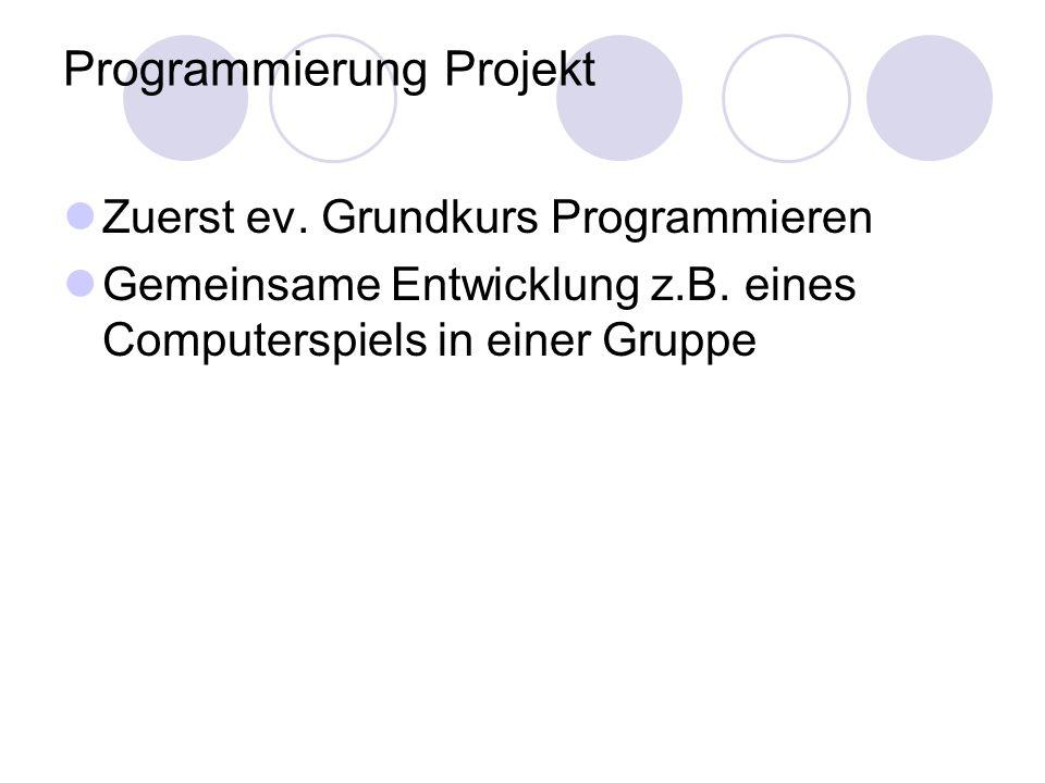 Programmierung Projekt Zuerst ev. Grundkurs Programmieren Gemeinsame Entwicklung z.B. eines Computerspiels in einer Gruppe