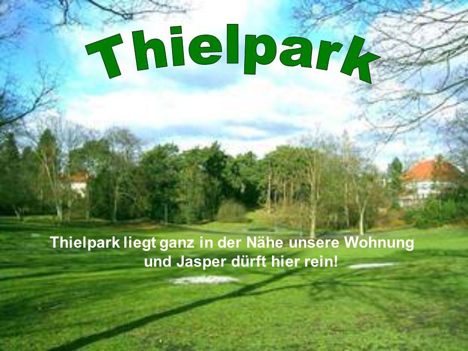 Thielpark liegt ganz in der Nähe unsere Wohnung und Jasper dürft hier rein!