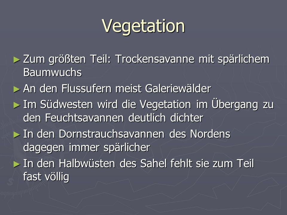 Vegetation Zum größten Teil: Trockensavanne mit spärlichem Baumwuchs Zum größten Teil: Trockensavanne mit spärlichem Baumwuchs An den Flussufern meist