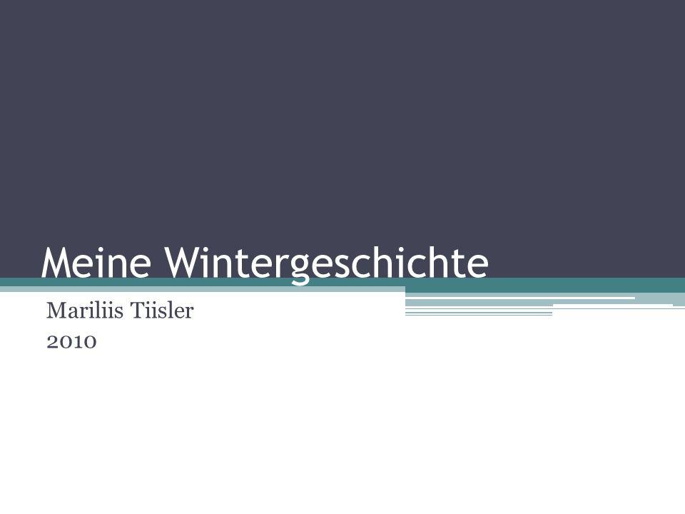 Meine Wintergeschichte Mariliis Tiisler 2010