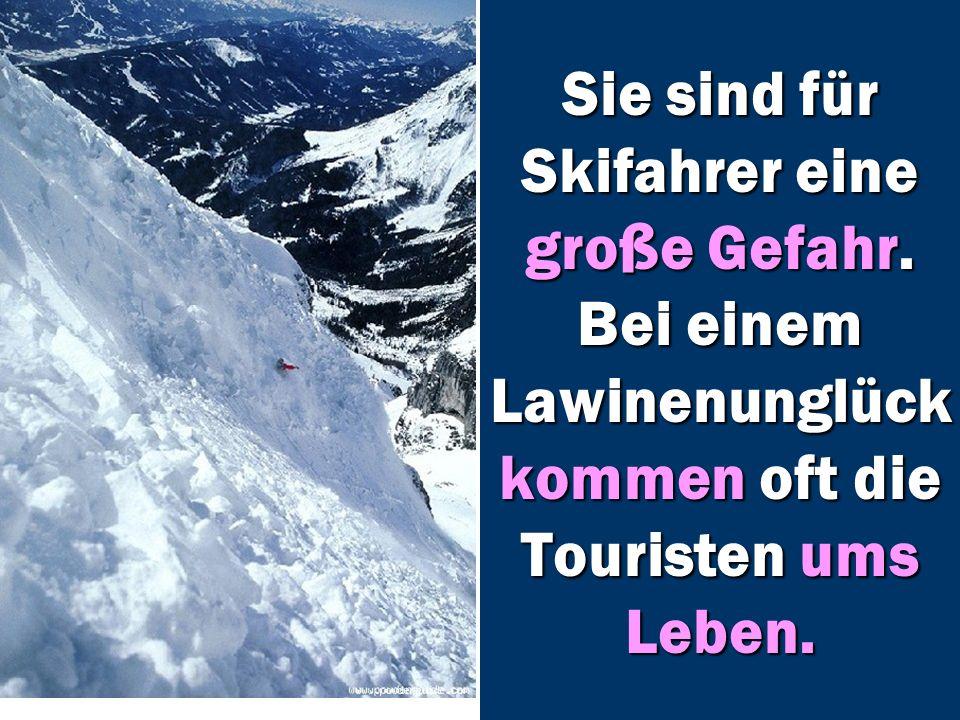 Sie sind für Skifahrer eine große Gefahr.