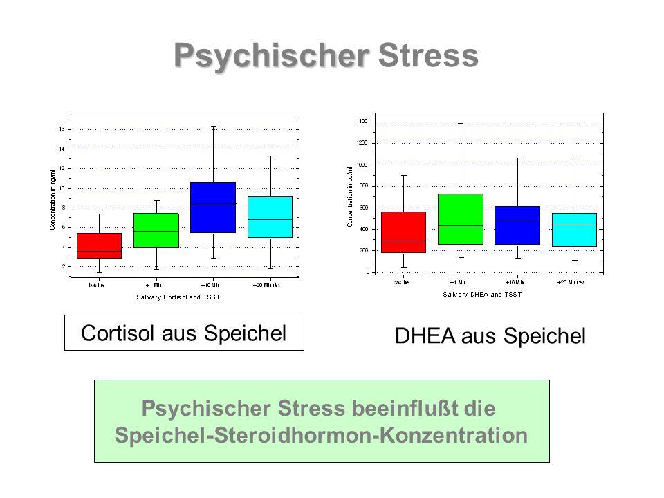 Cortisol aus Speichel DHEA aus Speichel Psychischer Stress beeinflußt die Speichel-Steroidhormon-Konzentration Psychischer Psychischer Stress