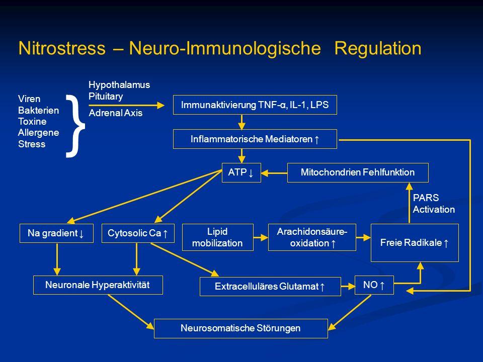 Nitrostress – Neuro-Immunologische Regulation Immunaktivierung TNF-α, IL-1, LPS Inflammatorische Mediatoren ATP Viren Bakterien Toxine Allergene Stres
