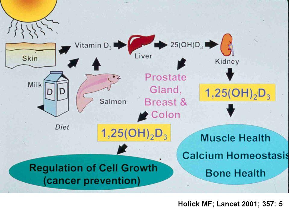 Holick MF; Lancet 2001; 357: 5