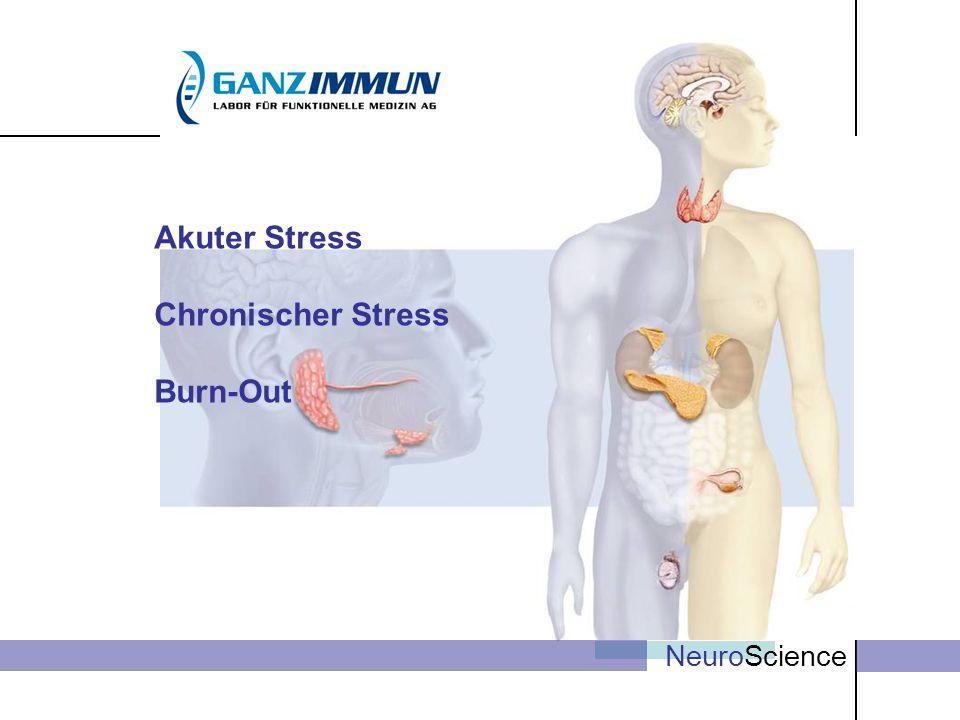 NeuroScience Akuter Stress Chronischer Stress Burn-Out