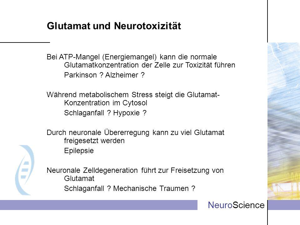 NeuroScience Glutamat und Neurotoxizität Bei ATP-Mangel (Energiemangel) kann die normale Glutamatkonzentration der Zelle zur Toxizität führen Parkinso