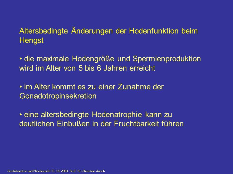 Gestütmedizin und Pferdezucht II, SS 2004, Prof. Dr. Christine Aurich Altersbedingte Änderungen der Hodenfunktion beim Hengst die maximale Hodengröße