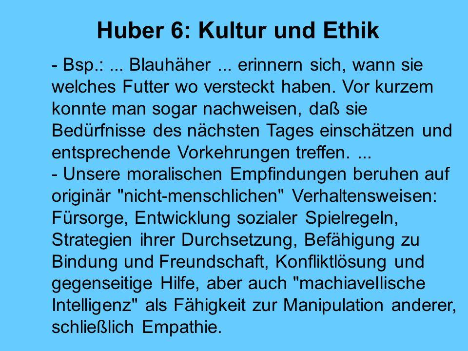 Huber 6: Kultur und Ethik - Bsp.:... Blauhäher... erinnern sich, wann sie welches Futter wo versteckt haben. Vor kurzem konnte man sogar nachweisen, d