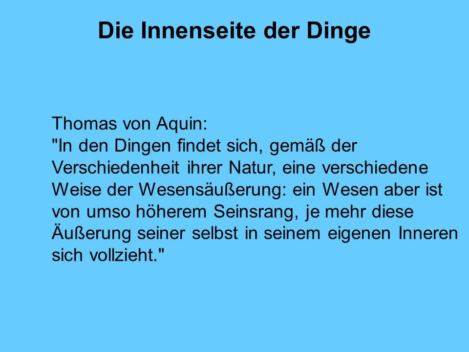 Die Innenseite der Dinge Thomas von Aquin: