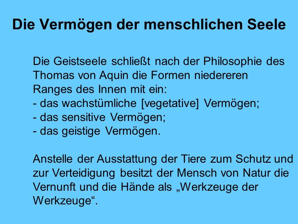 Die Vermögen der menschlichen Seele Die Geistseele schließt nach der Philosophie des Thomas von Aquin die Formen niedereren Ranges des Innen mit ein: