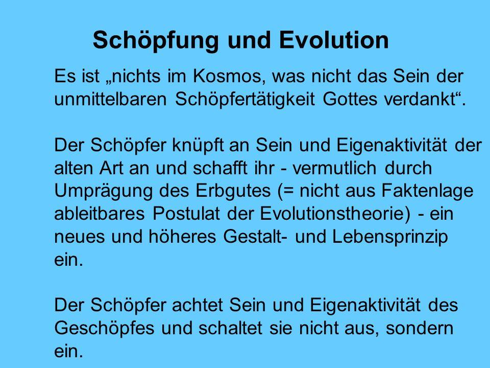 Schöpfung und Evolution Es ist nichts im Kosmos, was nicht das Sein der unmittelbaren Schöpfertätigkeit Gottes verdankt. Der Schöpfer knüpft an Sein u