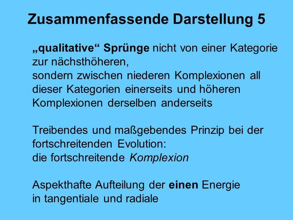 Zusammenfassende Darstellung 5 qualitative Sprünge nicht von einer Kategorie zur nächsthöheren, sondern zwischen niederen Komplexionen all dieser Kate