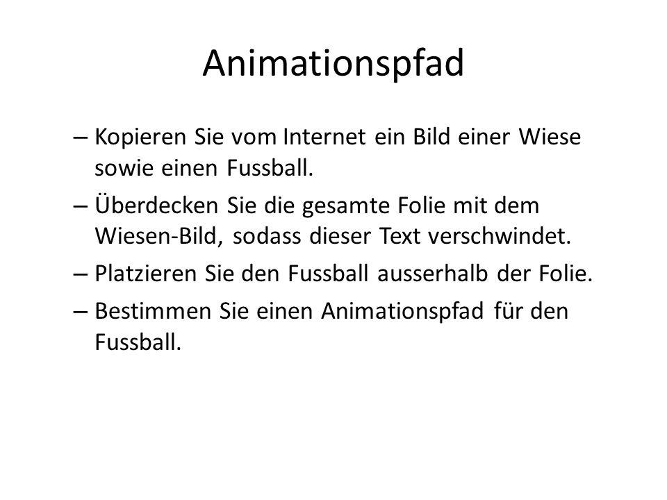 Animationspfad – Kopieren Sie vom Internet ein Bild einer Wiese sowie einen Fussball.
