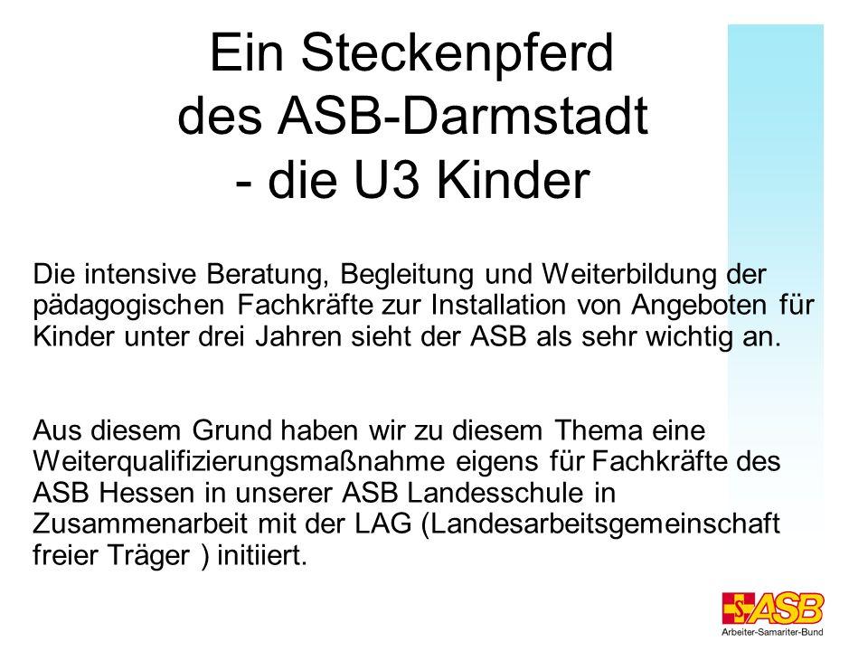 Ein Steckenpferd des ASB-Darmstadt - die U3 Kinder Die intensive Beratung, Begleitung und Weiterbildung der pädagogischen Fachkräfte zur Installation