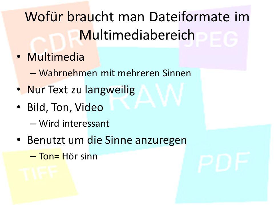 Wofür braucht man Dateiformate im Multimediabereich Multimedia – Wahrnehmen mit mehreren Sinnen Nur Text zu langweilig Bild, Ton, Video – Wird interessant Benutzt um die Sinne anzuregen – Ton= Hör sinn