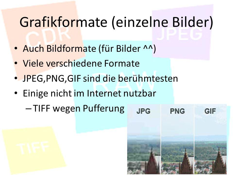 Grafikformate (einzelne Bilder) Auch Bildformate (für Bilder ^^) Viele verschiedene Formate JPEG,PNG,GIF sind die berühmtesten Einige nicht im Internet nutzbar – TIFF wegen Pufferung