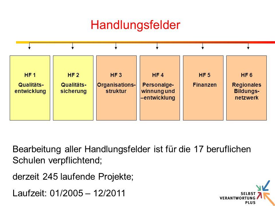 HF 1 Qualitäts- entwicklung HF 2 Qualitäts- sicherung HF 5 Finanzen HF 4 Personalge- winnung und –entwicklung HF 3 Organisations- struktur HF 6 Region