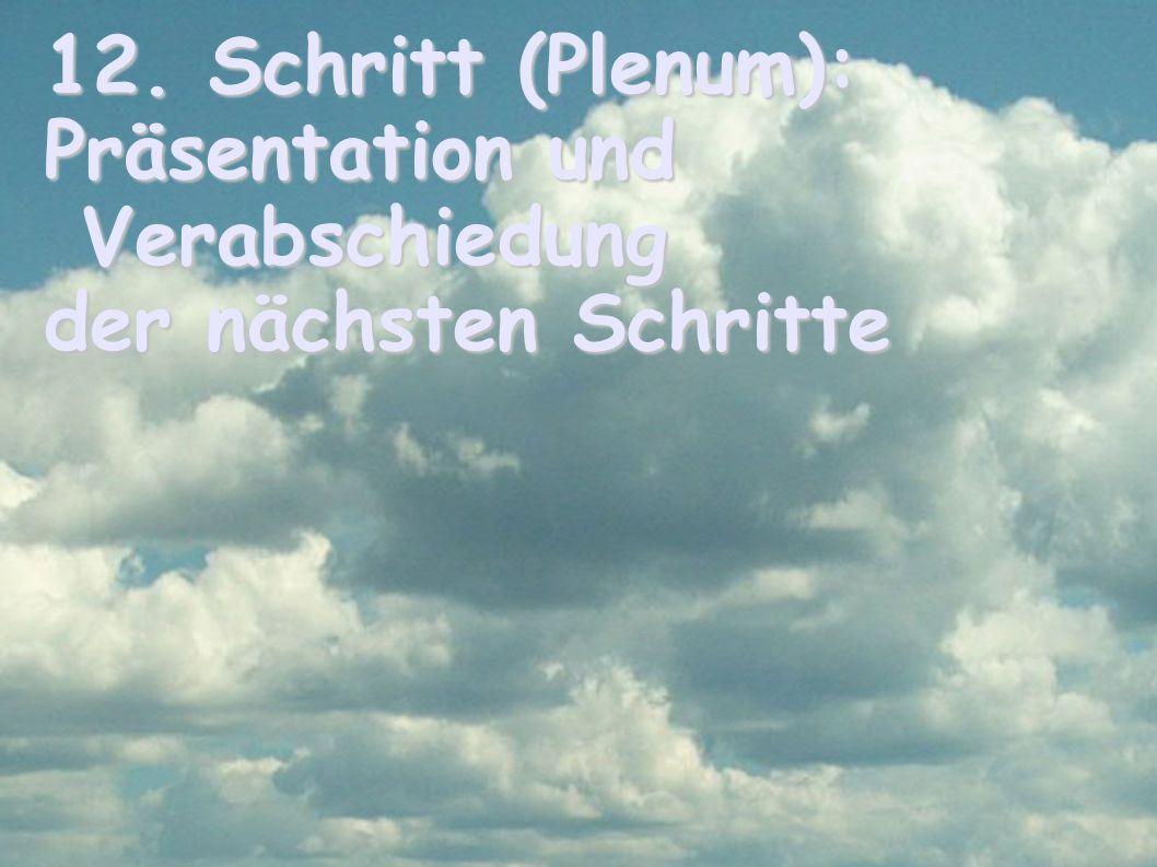 12. Schritt (Plenum): Präsentation und Verabschiedung der nächsten Schritte