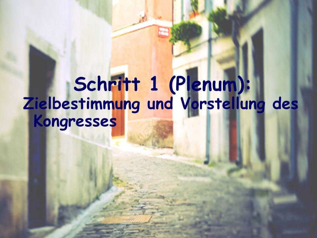 Schritt 1 (Plenum): Zielbestimmung und Vorstellung des Kongresses
