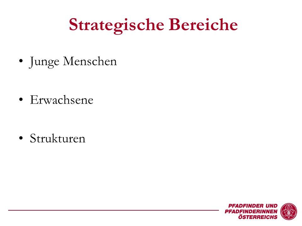 Strategische Bereiche Junge Menschen Erwachsene Strukturen