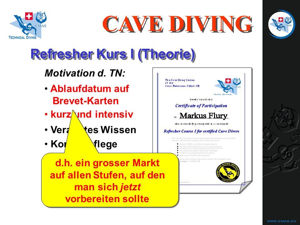 Refresher Kurs I (Theorie) CAVE DIVING Resultat 30.11.03: 8 TN, davon 2 SGH, 3 NACD, 3 CMAS Veraltetes Wissen Motivation d.